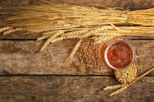 Hard Knox Brewery Beer Sits on Table Next to Fresh Malt Atop Wooden Background