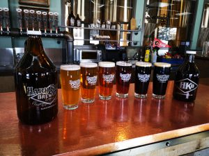 Various Hard Knox Brewery Craft Beers are Displayed on Countertop in Taproom Between Two Hard Knox Brewery Glass Growlers